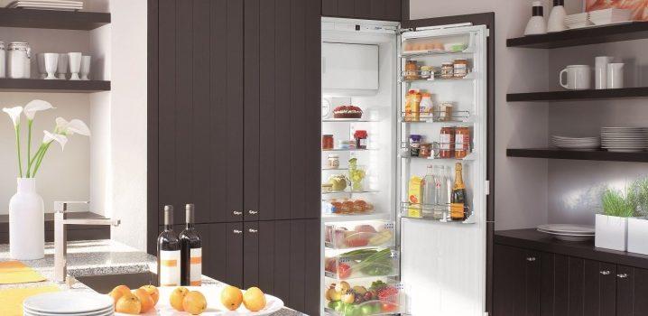 Установка встраиваемого и отдельноcтоящего холодильника